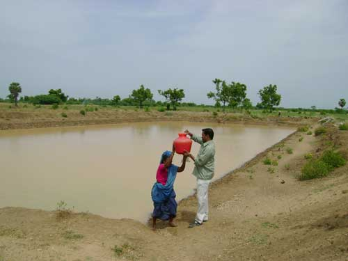 Village Tank or Pond being used for harvesting and storing rainwater.